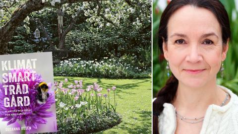 Susanna Rosén har tre egna trädgårdar där hon odlar klimatsmart. En i Stockholmsområdet, en fäbod i Gästrikland och en gård på Voujatudden i Lappland. Bild: Pernilla Hed