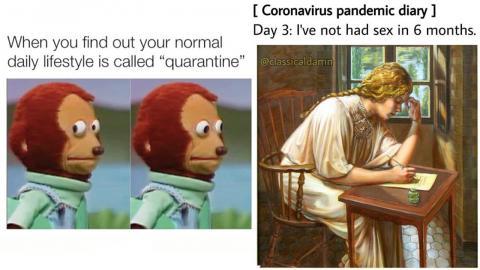 Två mycket spridda memes just nu. Faksimil: Instagram/@classicaldamn