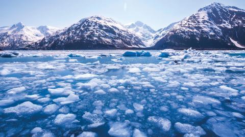 Lördagens notering i Verchojansk – som betraktas som en av världens kallaste, permanent bebodda platser – ligger 106 grader över stadens eget köldrekord, -67,8 grader.  Bild: Shutterstock