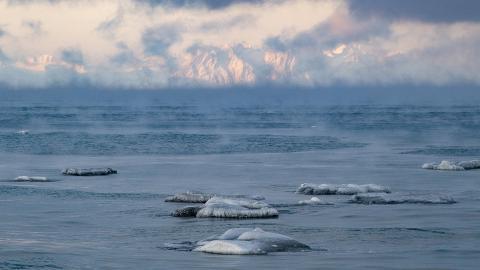 Uppvärmningen är snabbare i Arktis än i resten av världen. Bild: Jonas Ekströmer/TT