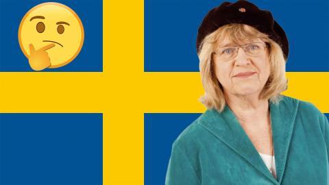 Katarina Mazetti tycker att det pågår mycket killgissande i Sverige. Illustration: Shutterstock
