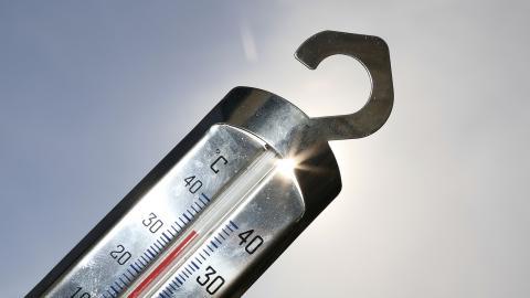 Jordens medeltemperatur når rekordhöga nivåer.  Johan Nilsson / TT