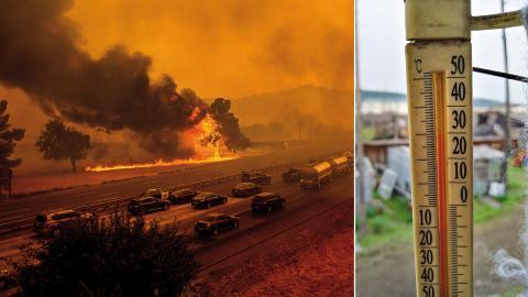 I mitten av augusti drabbades Kalifornien i USA av flera stora skogsbränder till följd av torka och extremvärme.  Bild: Noah Berger/Olga Burtseva/AP