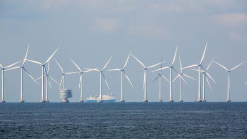 I rapporten från Næringslivets Hovedorganisasjon lyfts bland annat vindkraft till havs fram som ett särskilt intressant område att satsa på.  Bild: Drago Prvulivic/TT
