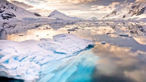 Minst 2,5 meter högre havsnivå – om mänskligheten misslyckas med Parisavtalet blir det ännu mer.  Bild: Shutterstock
