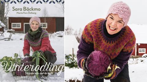 """""""Eftersom vår odling inte är anpassad efter några kommersiella intressen har vi kunnat spänna bågen och vågat vara flexibla"""", säger Sara Bäckmo som är expert på vinterodling. Bild: Maria Fors Östberg"""