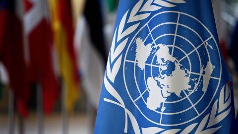 """""""FN har flera gånger visat sig inte vara lämplig för utvecklingsinsatser"""", skriver debattören. Bild: Shutterstock"""