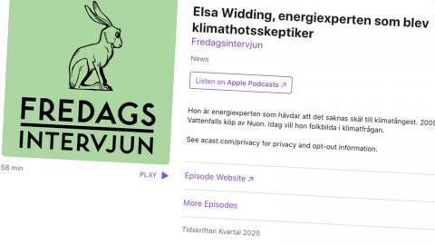 Elsa Widding intervjuades i Kvartals podd Fredagsintervjun. Bild: Faksimil/Apple Podcasts