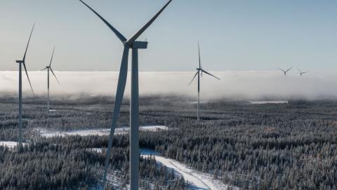 Markbygden 1101 utanför Piteå är Europas största vindkraftspark på land. Anders Wijkman oroas över det lokala motståndet mot ny vindkraft, eftersom vindkraften spelar en nyckelroll för klimatomställning. Bild: Magnus Hjalmarson Neideman/SvD/TT
