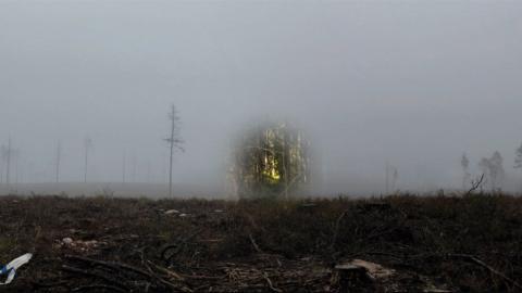 """""""Skogen är sammanflätad med den jag är"""", säger Anna Berglund, en av konstnärerna bakom den interaktiva utställningen """"Till minne av skogen"""".  Bild: Linduo"""