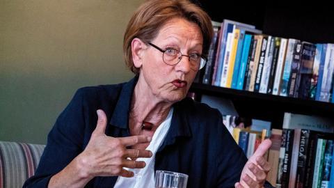 Gudrun Schyman vill att Feministiskt initiativ går till val som Klimatinitiativet. bild johan nilsson/tt Bild: Johan Nilsson/TT