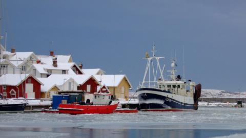 Kontrollen av fisket fungerar för dåligt, menar forskare vid Sveriges Lantbruksuniversitet (SLU). Båten på bilden är inte kopplad till debattartikeln.  Bild: Shutterstock