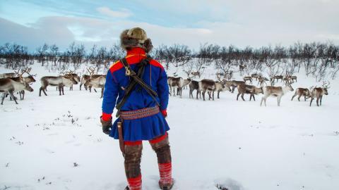 Debattörerna vill se ett ökat samarbete på nordisk nivå för att motverka trakasserier och hot mot samer. Bild: Heiko junge/NTB/TT