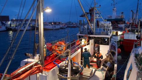 Nu planeras övervakningskameror för att överaka räkfisket bättre.  Bild: Berit Roald/TT