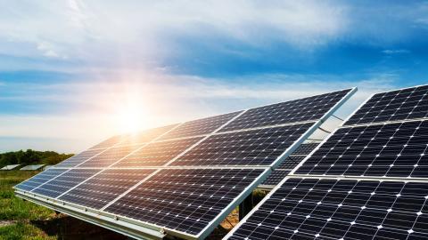 Med en tydlig nationell strategi hade Sverige kunnat satsa stort på solcellstillverkning. Bild: Shutterstock