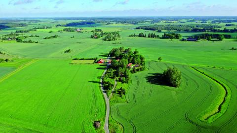 Bara 16 procent av Sveriges lantbruksarealer ägs av kvinnor.  Fredrik Sandberg/TT