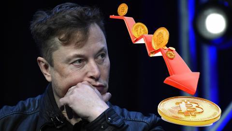 Elon Musk.  Susan Walsh/AP. Shutterstock.
