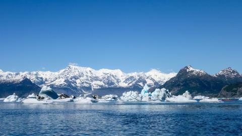 Columbia Glacier i Kanada. Med den nya Google Earth-tjänsten Timelapse kan användare se hur glaciären förändrats under de senaste 37 åren. Bild: Shutterstock