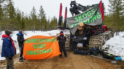Ledande centerpartister har svartmålat Skogsupprorets aktioner. Debattörerna kräver att dessa företrädare slutar använda auktoritära metoder i debatten. Bild: Extinction Rebellion Sverige