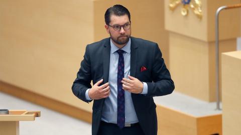 Sverigedemokraternas partiledare Jimmie Åkesson.  Bild: Christine Olsson/TT