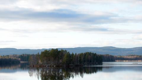 Under 2019 beviljades 8000 dispenser för att bygga och bo i närheten av vatten. Bild: Fredrik Sandberg/TT