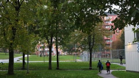 Fastighetskontoret har följt upp de omkring 200 vuxenhushåll som flyttat ut innan maj i år. Uppföljningen visar att några av de farhågor man hade har blivit en realitet.  Bild: Hanna Strömbom