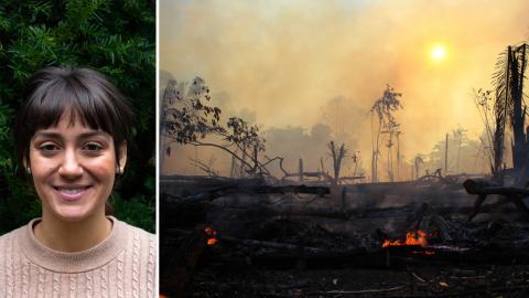 Bild från bränder i brasilianska Amazonas.  Bild: Edmar Baros/TT